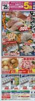 本日の安火曜市は!!鮮魚祭り