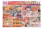 四国総力祭
