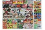 平成最後の春のフジ総力祭