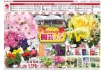 花のあるお庭づくり 園芸フェア