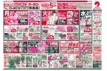 9/20(日)~22(火) 生活応援クーポン1枚進呈!